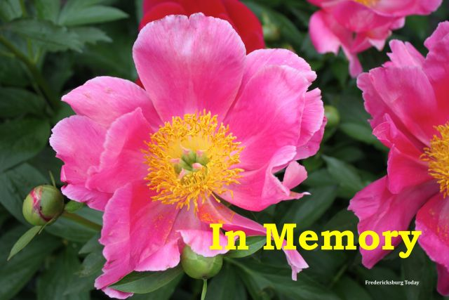 Fredericksburg Area Obituaries April 15 – 21