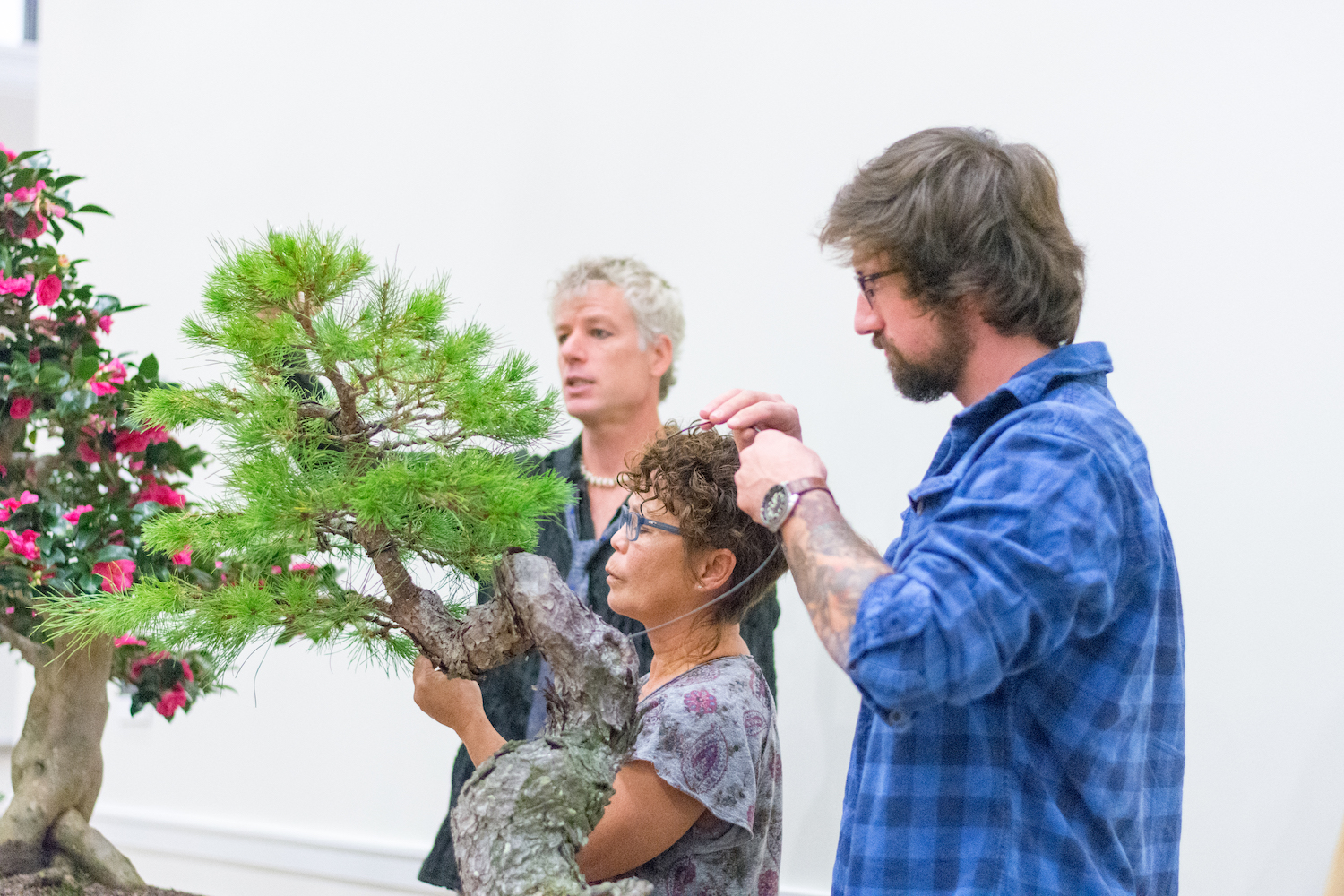 Contemplative garden brings 'Zen' to UMW