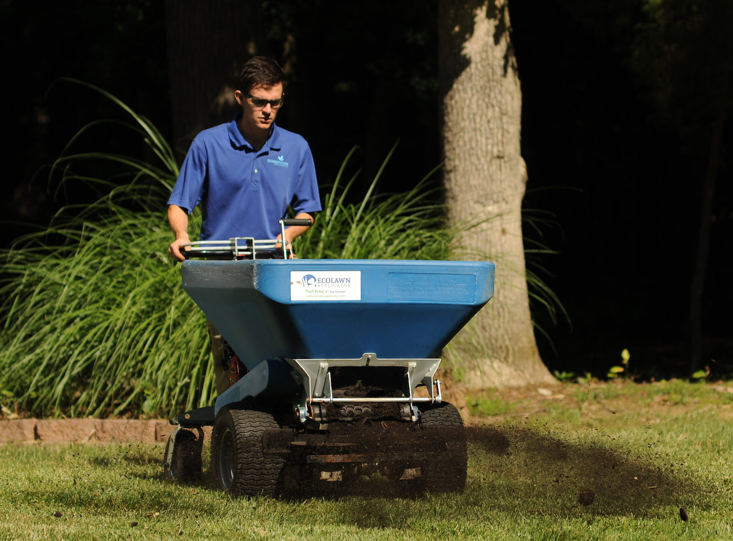Aerate, compost and seed for lush lawn