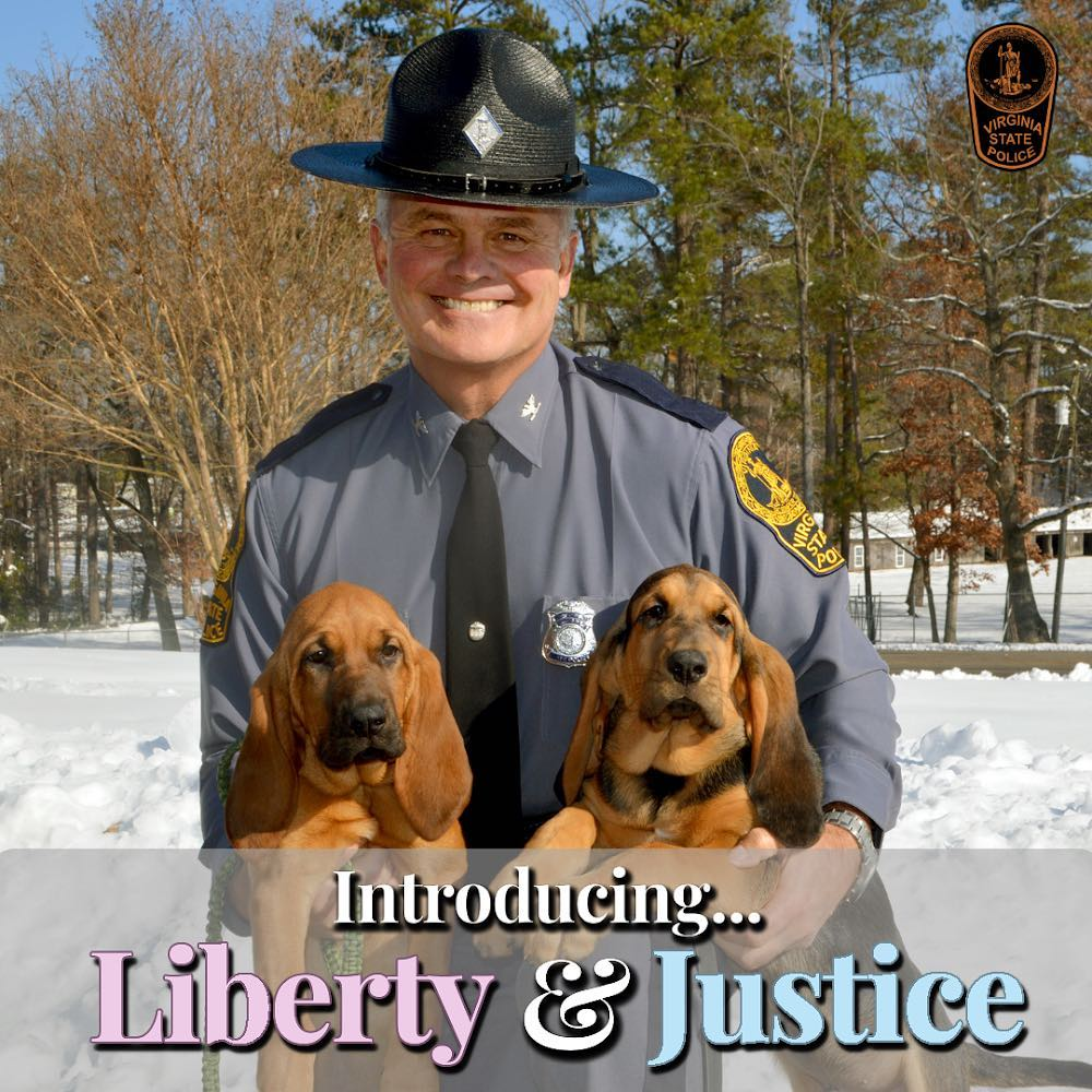 "Virginia State Police Launch New Instagram Site with K-9 ""Name Reveal"""