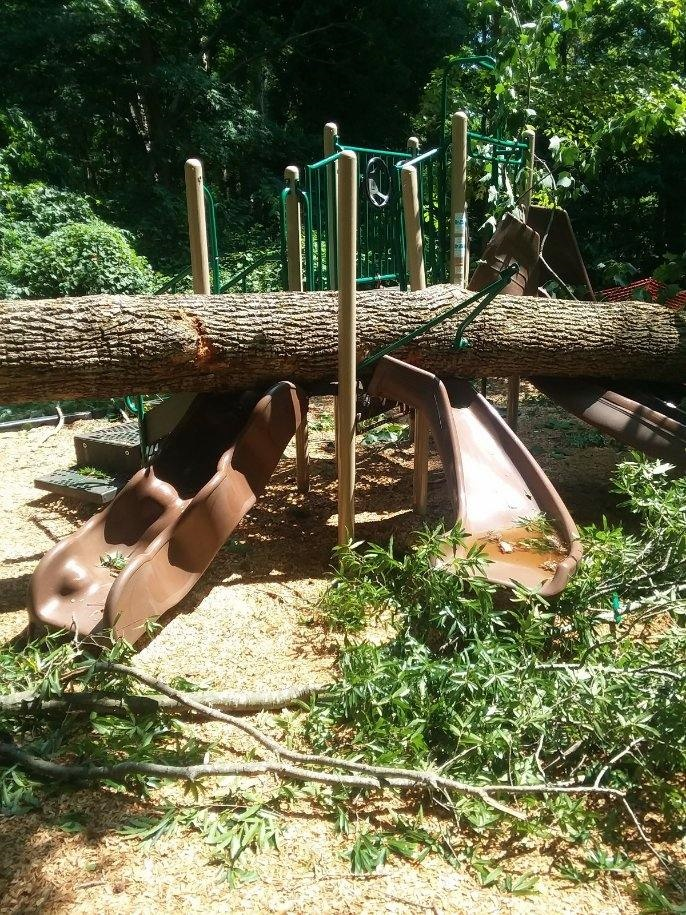 City Parks and Recreation Director's Fund raises money for expanded Alum Spring Park playground equipment