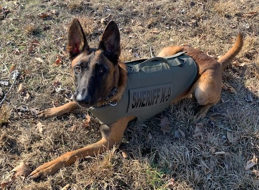 Stafford County Sheriff's Office K9 Rip receives donation of body armor