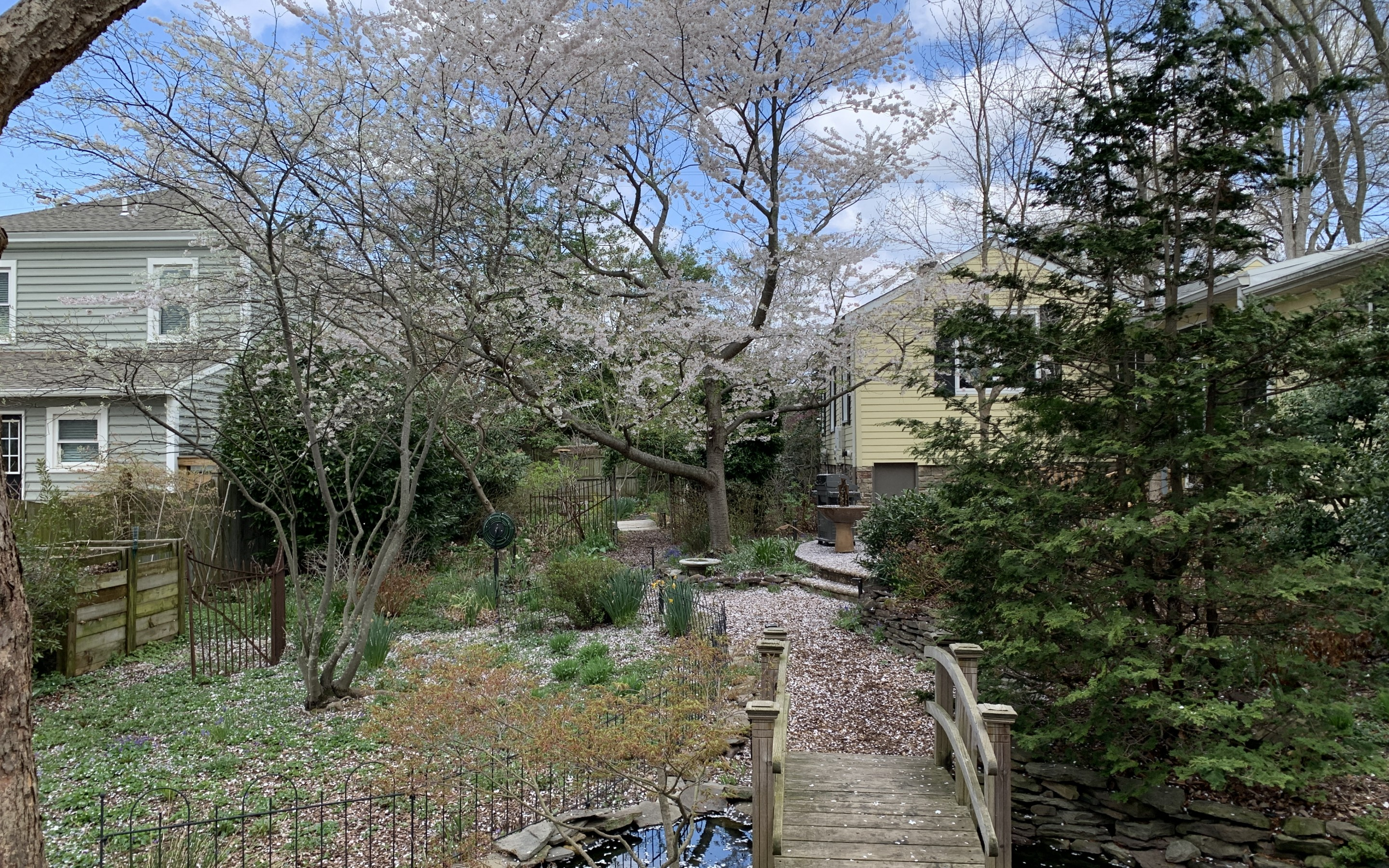 WATCH:  Historic Garden Week preview 1/Native plants and nature